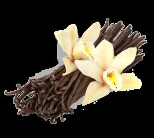 struk vanilka